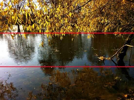 Baum mit gelben Blaettern an Flussufer