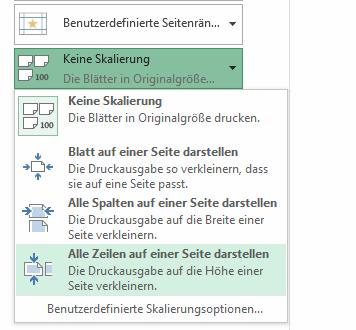 Excel - Alle Zeilen auf einer Seite darstellen