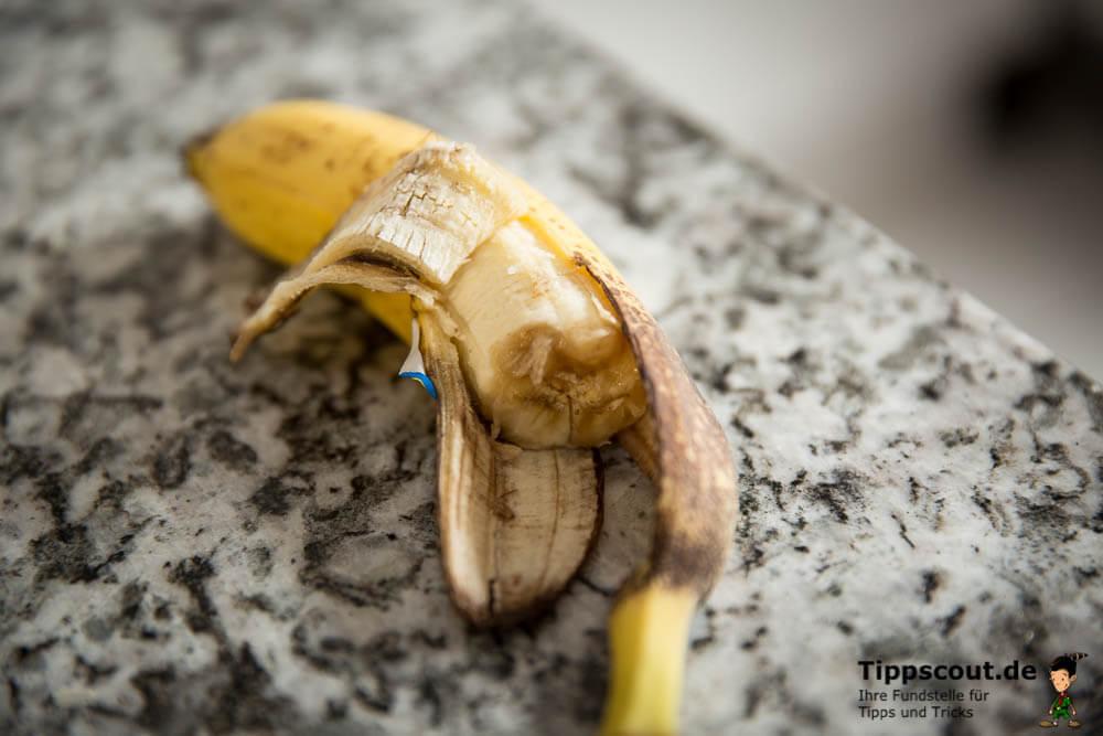 Angebissene Banane - Einladung für Obstfliegen