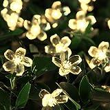 InnooTech LED Solar Blumen Lichterkette 5 Meter 50er Warmweiß, Außerlichterkette Deko mit 2 M...