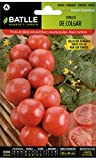 Batlle Gemüsesamen - Hängetomaten Ausw. Domingo (175 Samen)