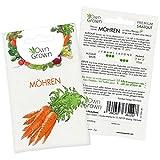 OwnGrown Premium Möhren Samen (lange rote stumpfe), Karotte Samen zum Anbauen, Möhren Saatgut für...