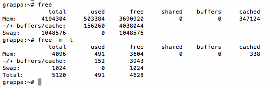 Der Befehl Free auf der Linux-Kommandozeile