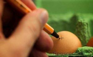 Mit Markierung rohe und gekochte Eier unterscheiden - (Foto: Martin Goldmann)