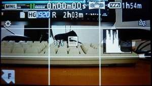 Gitternetz auf Monitor einer digitalen Videokamera - (Foto: Martin Goldmann)