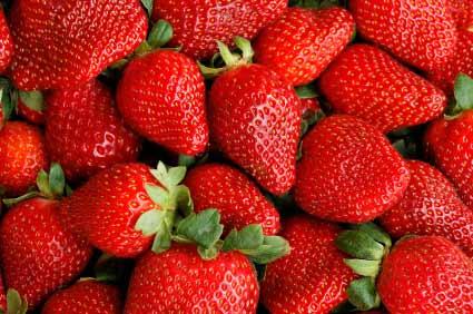 Erdbeeren - (Foto: iStockphoto/Joanna Pecha)