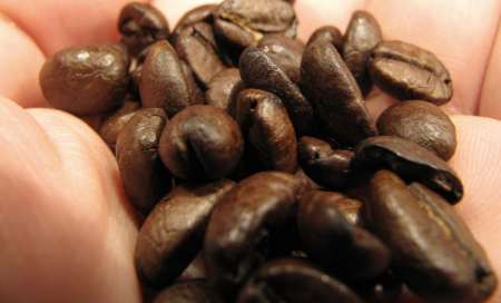 Kaffeebohnen - (Foto: Markus Schraudolph)