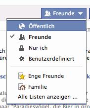 Facebook-Auswahl der Zielgruppe einer Statusmeldung