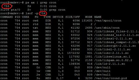 lsof zeigt alle Dateien von cron an