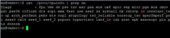 Linux 64 Bit erkennen