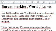 Beispiel rote Markierung Word