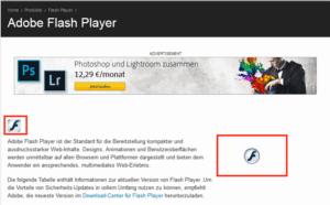 Flash Homepage nach Start der Plugins