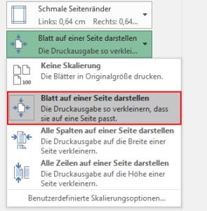 Excel - Blatt auf einer Seite darstellen