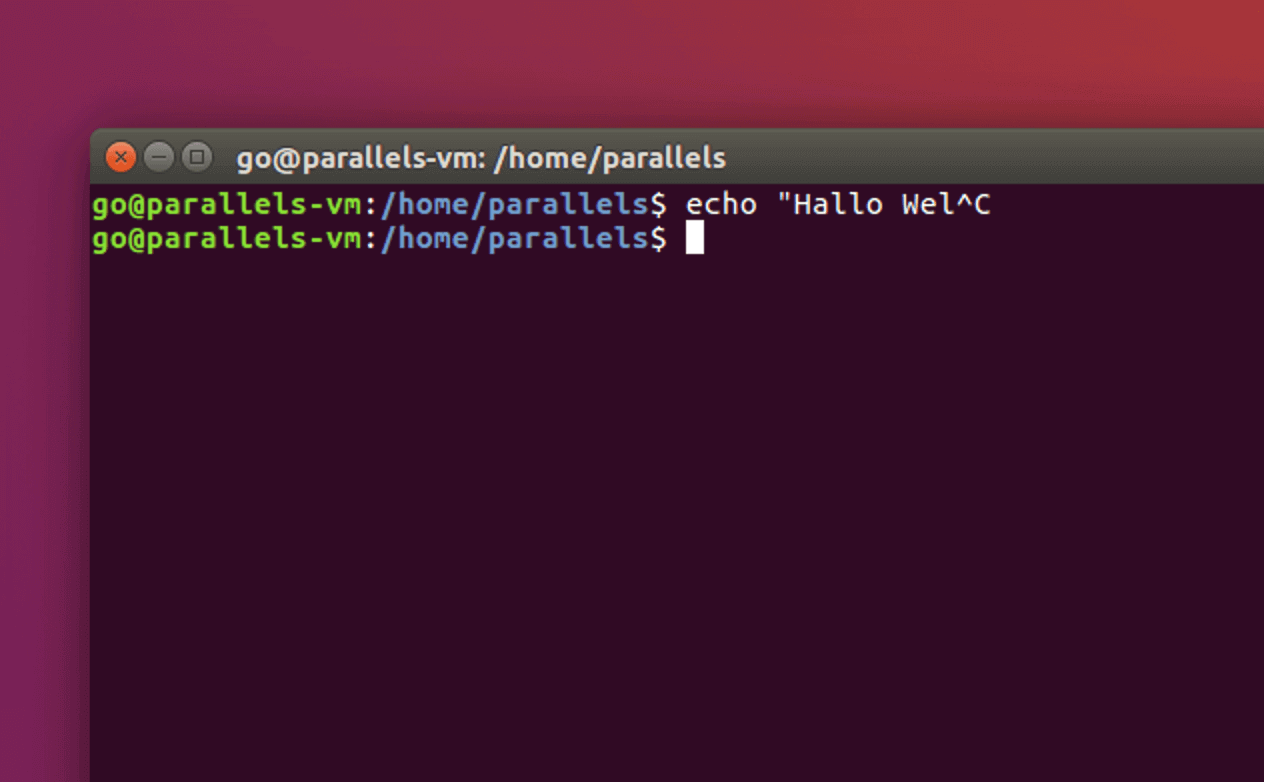 Befehl abbrechen mit Linux