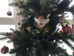 weihnachtsbaum nachhaltig
